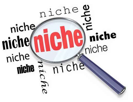 How to Choose a Profitable Niche Topic For Your Blog
