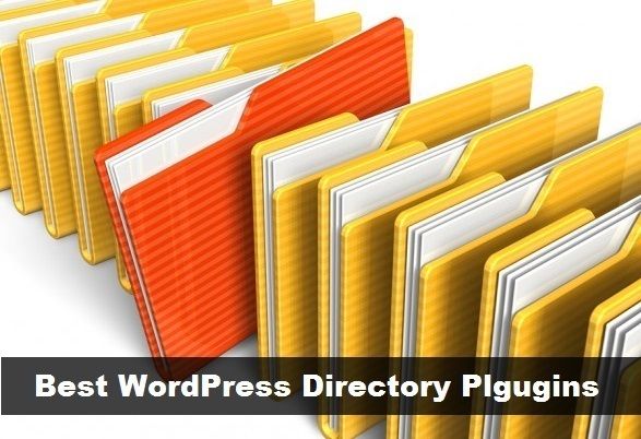Best Web Directory Plugins for WordPress Free and Pro